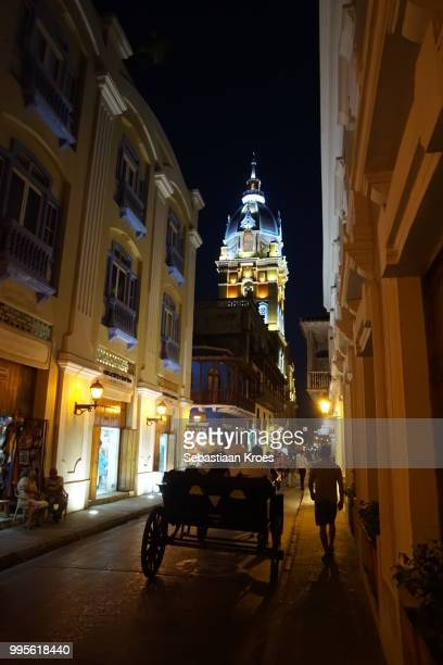 Horse Cart and Calle de Don Sancho, Cathedral, Night in Cartagena, Colombia