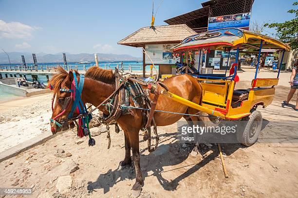 Horse cart, Gili Islands Indonesia