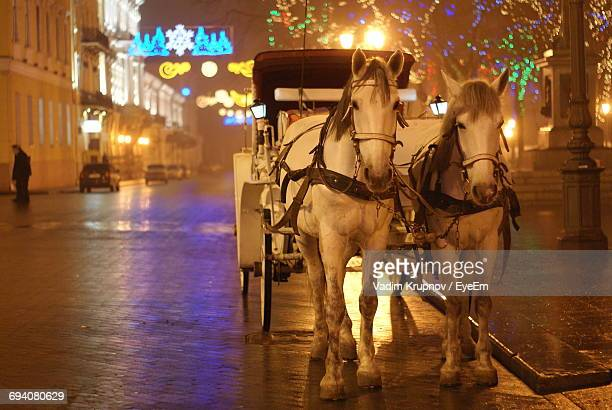 horse cart in illuminated city at night during winter - christmas horse stock pictures, royalty-free photos & images