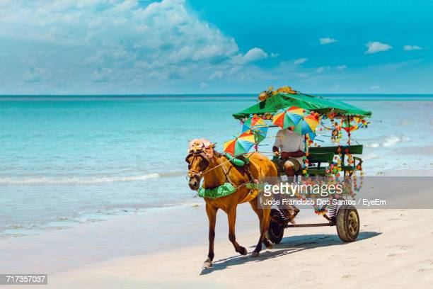 Horse Cart On Beach Against Sky