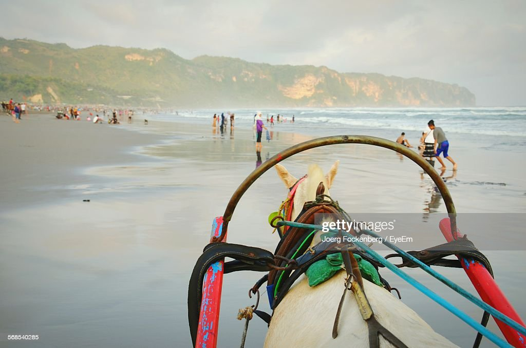 Horse Cart On Beach With People Against Sky : Stock Photo
