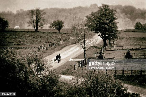 Horse Cart On Dirt Road Amidst Field