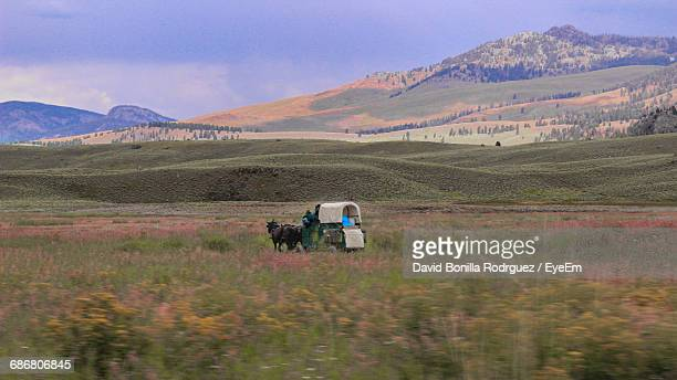Horse Cart On Field By Mountains Against Cloudy Sky During Sunset