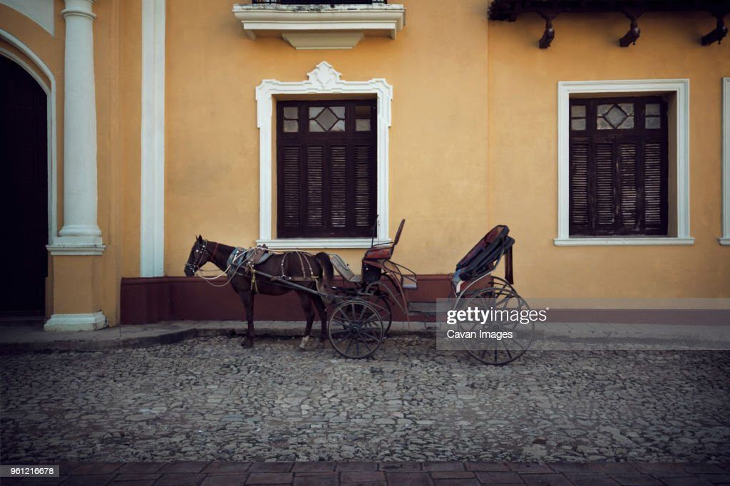 Horse cart on road by building : Stock Photo