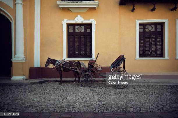 Horse cart on road by building