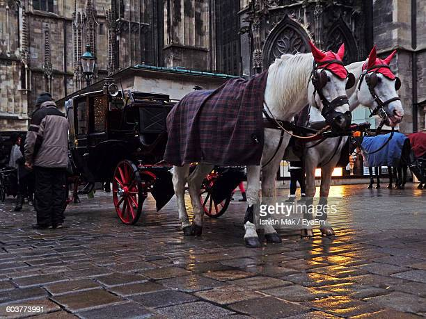 Horse Cart On Street Against Historic Building