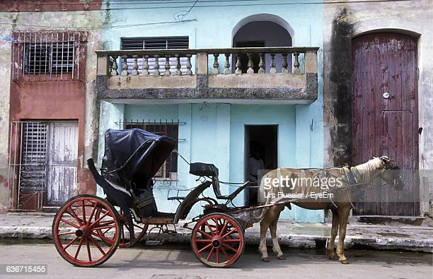 horse cart outside buildings - animal powered vehicle stock photos and pictures
