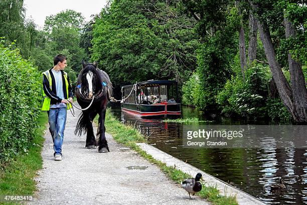 horse drawn boot, llangollen, north wales - pferdeantrieb stock-fotos und bilder