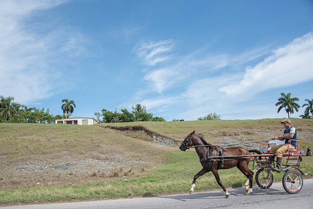 horse drawn carriage at full speed in the shoulder of the