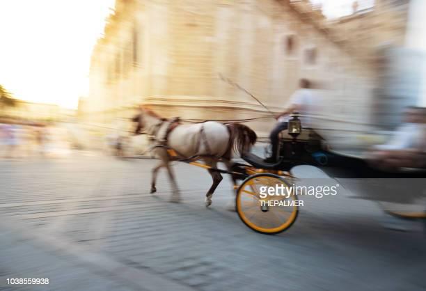 carro de caballo en sevilla - sevilla fotografías e imágenes de stock