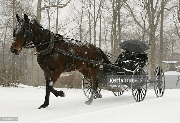 A horse drawn carriage carrying two Amish women travels down a snowy road January 22 2005 in Charlotte Hall Maryland The Washington DC area and its...