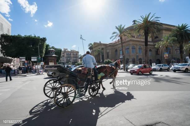 horse drawn carriage in a square next to teatro massimo - palermo foto e immagini stock