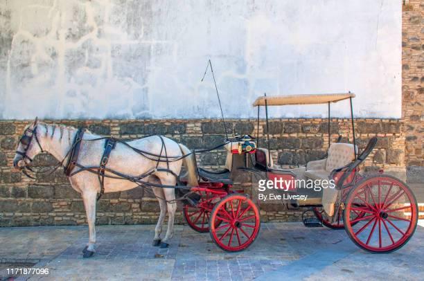 horse drawn carriage - pferdeantrieb stock-fotos und bilder