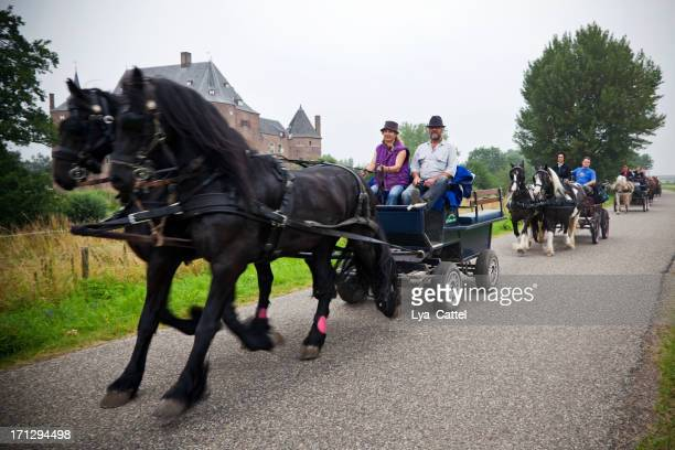 horse drawn carriage - gelderland stock pictures, royalty-free photos & images