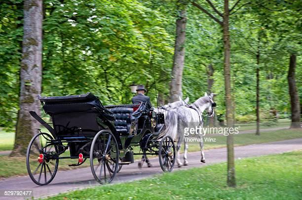 horse drawn carriage - koets stockfoto's en -beelden