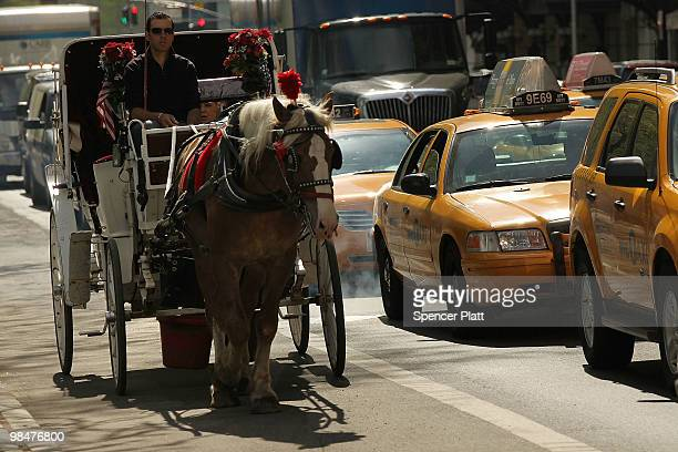 A horse drawn carriage waits to move outside of Central Park on April 15 2010 in New York New York A new law that passed the New York City Council...