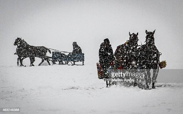 """Horse drawn sleighs ride on the ice over the """"Lake Cildir"""", country's eastern Anatolia Region's 2nd largest lake with 123 square kilometers area, as..."""