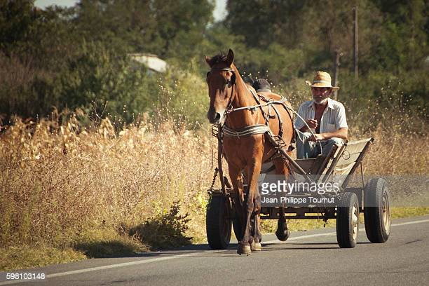 horse driven cart in rural Southern Romania, Eastern Europe