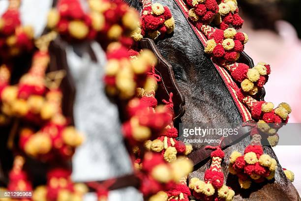 A horse during horseback parade at the 'Feria de Abril 2016' the traditional Seville's Fair with 169 years of history on April 14 Seville Spain The...