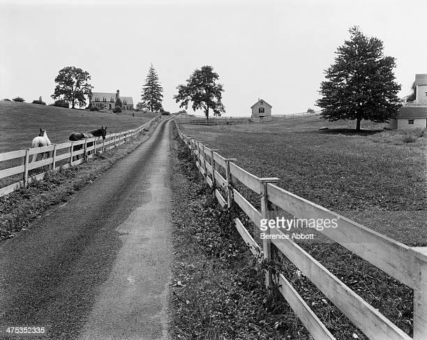 Horse farm Maryland United States 1954