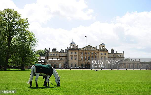 A horse grazes in front of Badminton House on day three of the Badminton Horse Trials on May 9 2014 in Badminton England