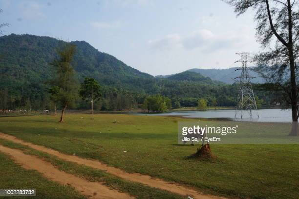 horse grazing on field against mountains - on stock pictures, royalty-free photos & images