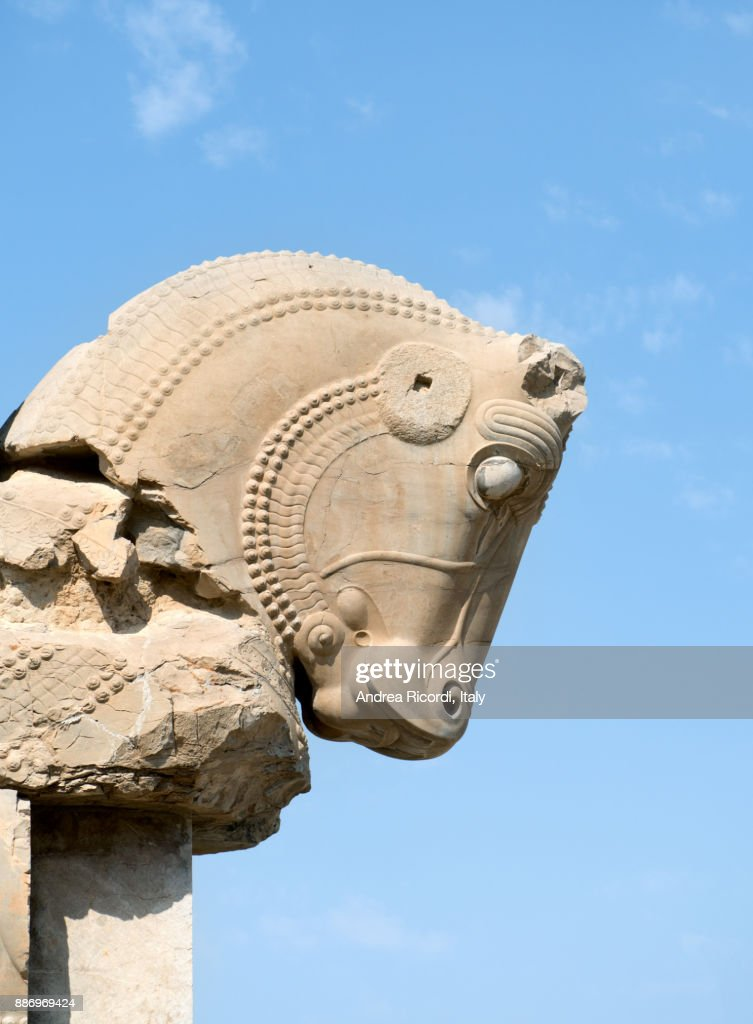 Horse Head Sculpture Persepolis Iran High Res Stock Photo Getty Images