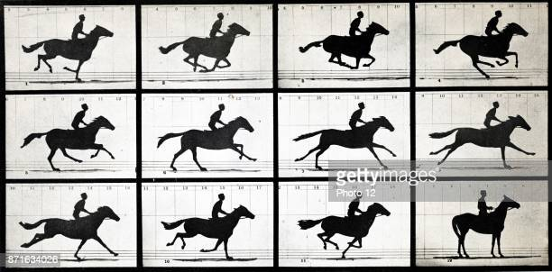 Horse in Motion by Eadweard Muybridge an English photographer important for his pioneering work in photographic studies of motion and early work in...