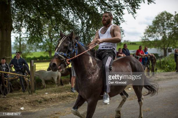 Horse is driven down the 'mad mile' during the annual Appleby Horse Fair on June 07, 2019 in Appleby-in-Westmorland, England. The annual gathering...