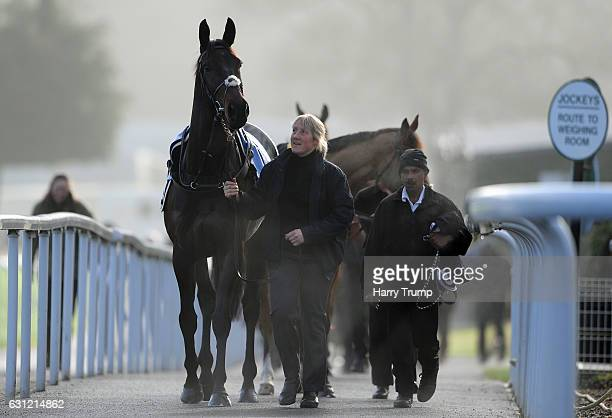 A horse is led into the parade ring prior to the Bathwick Tyres National Hunt Maiden Hurdle at Chepstow Racecourse on January 8 2017 in Chepstow Wales