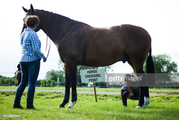 A horse is prepared ahead of competing during 152nd the Ryedale Country Show on July 31 2018 in Kirbymoorside England Held in Welburn Park near...