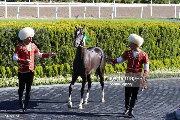 A horse is seen during the opening ceremony of AkhalTeke Horse Beauty Contest within annual Turkmen Racing Horse Festival in Ashgabat Turkmenistan on...