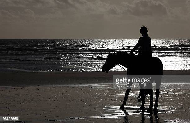 A horse is silhouetted against the sea as it walks along the beach on November 17 2009 in Camber United Kingdom