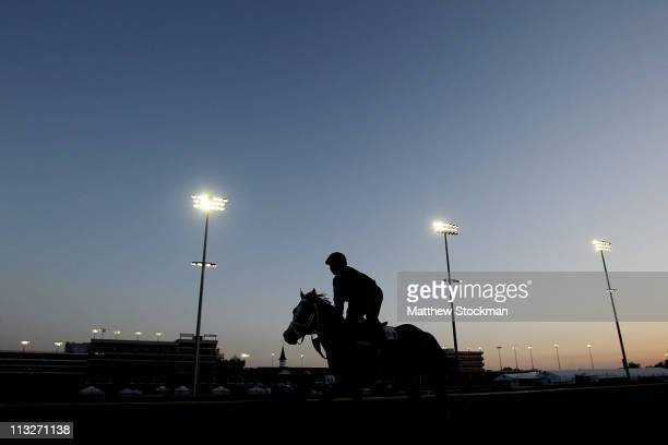 A horse is taken to the track during the morning exercise session at Churchill Downs on April 29 2011 in Louisville Kentucky