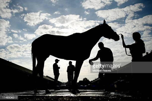A horse is washed in the barn area after morning workouts in preparation for the 145th running of the Kentucky Derby at Churchill Downs on May 2 2019...