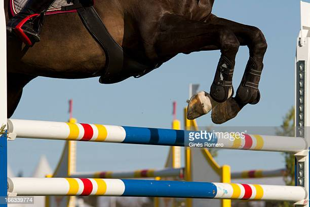 Horse Jump in a show competition