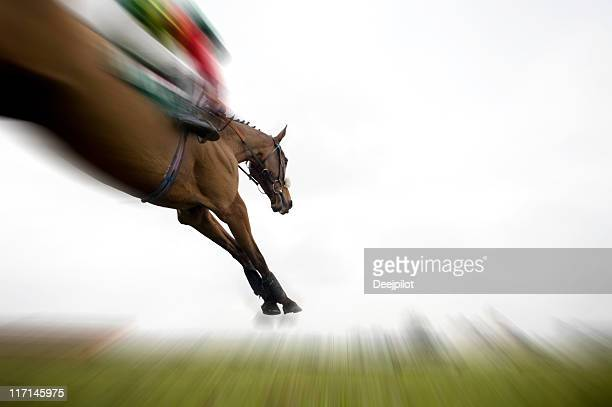 Horse Jumping Fench During Race Motion Blur