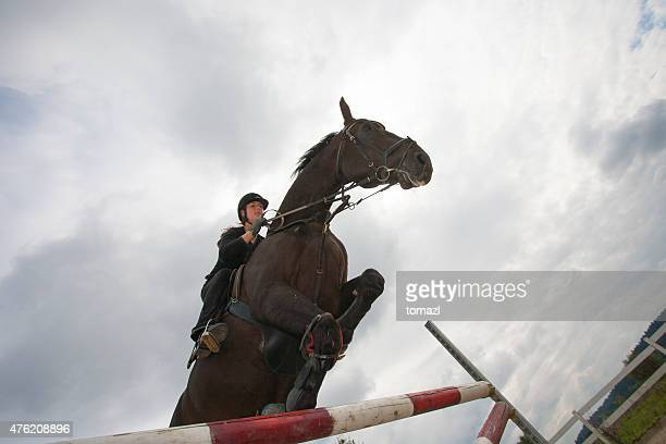 Horse jumping over hurdles