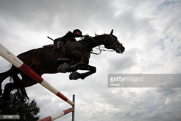 horse jumping - equestrian event stock pictures, royalty-free photos & images