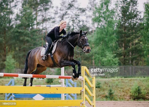 horse jumping - equitación fotografías e imágenes de stock