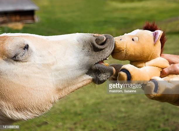 Horse kissing stuffed toy