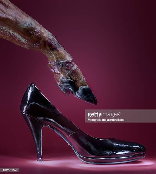 Horse leg with hill shoes