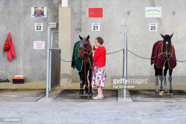 A horse owner enjoys a beer in the stables after the last race during New Zealand Trotting Cup Day at Addington Raceway on November 13 2018 in...