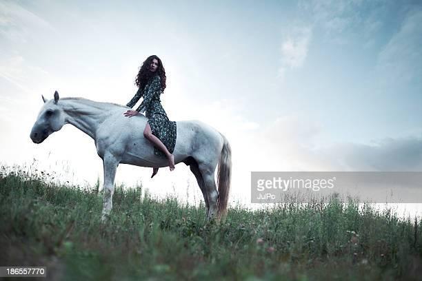 cheval - cheval blanc photos et images de collection