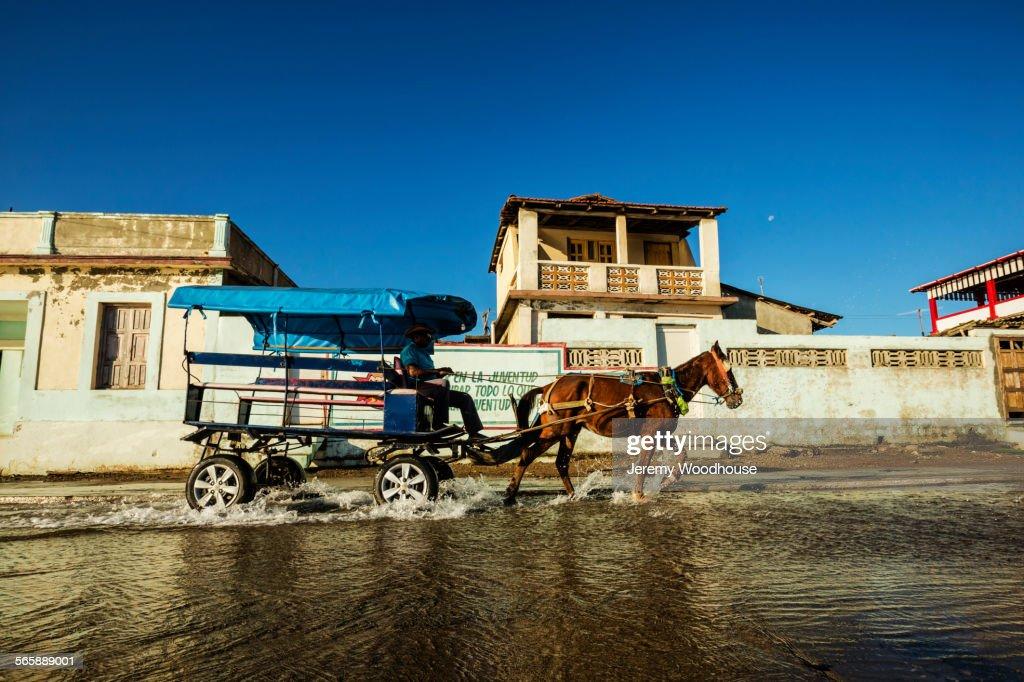 Horse pulling cart in puddle, Baracoa, Guantanamo, Cuba : Stock-Foto