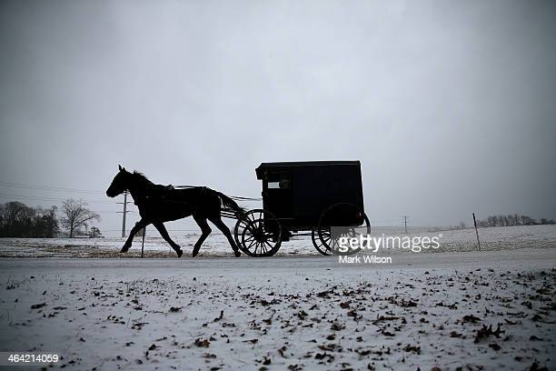A horse pulls an Amish buggy during a snowfall January 21 2014 in Mechanicsville Maryland A strong winter storm is bearing down on the East Coast...