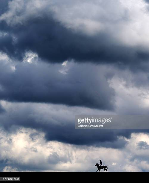 A horse pulls up at the top of the hill after running in The Havana Gold Handicap Stakes at Newmarket racecourse on May 03 2015 in Newmarket England