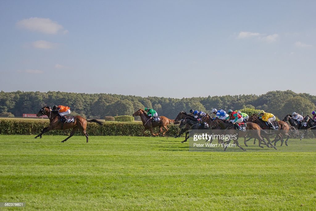 Horse Race On Grassy Field Against Sky : Stock Photo