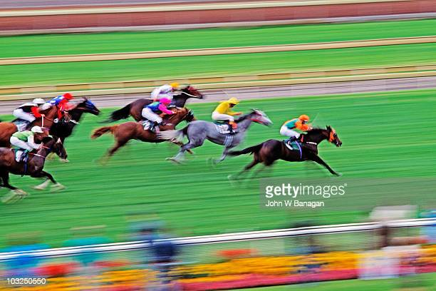 horse race - racehorse stock pictures, royalty-free photos & images