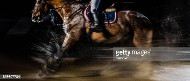競馬 - 馬術大会 ストックフォトと画像